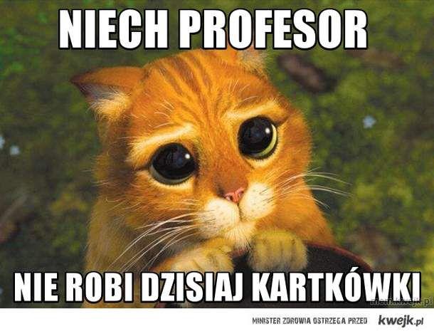 niech profesor