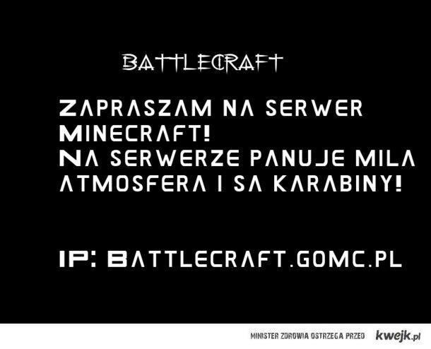 Serwer Minecraft