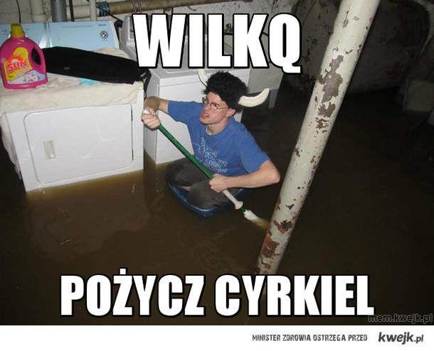 wilkq