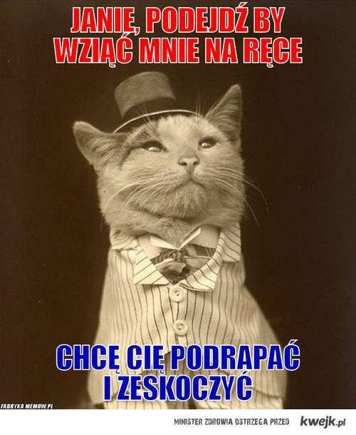 Jaśniepan Kot