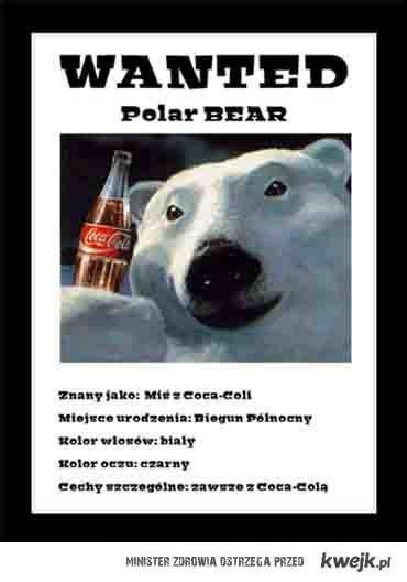 WANTED !!! Polar Bear