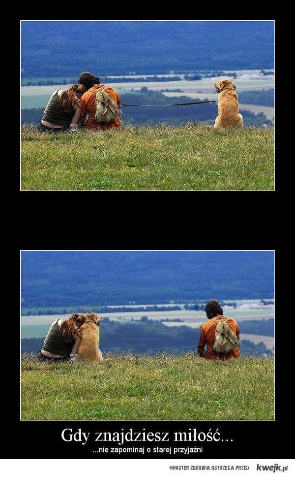 Gdy znajdziesz miłość..