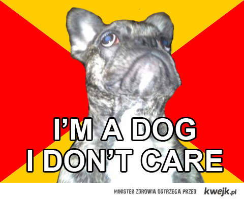 I'AM A DOG. I DON'T CARE