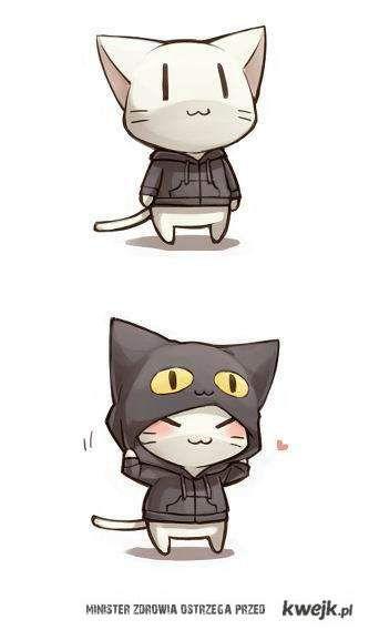 now I'm a black cat XD