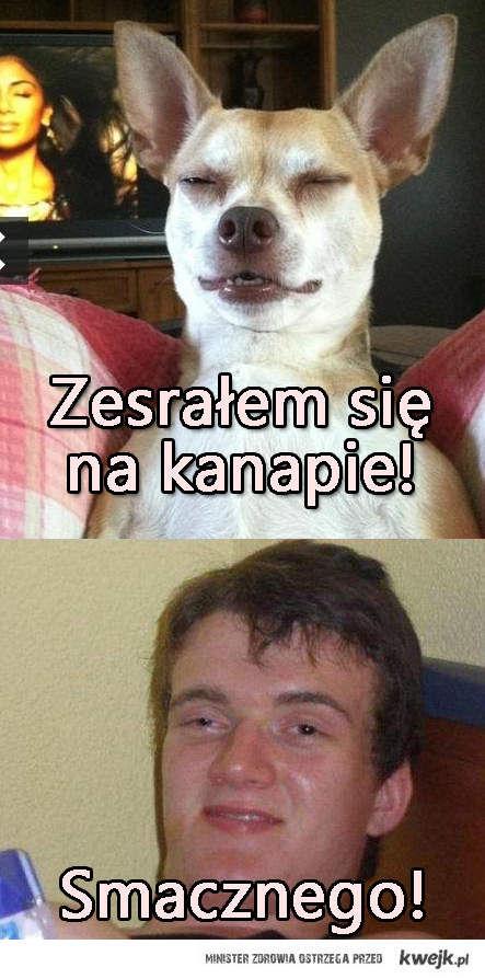 Zbyszek i jego pies