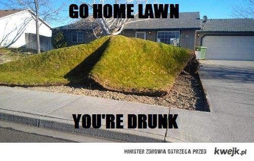 pijany trawnik