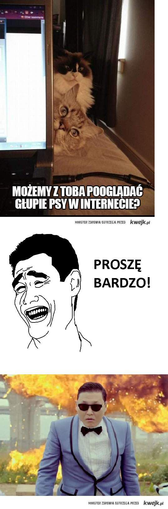 Głupie PSY