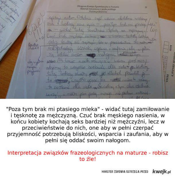 Interpretacja związków frazeologicznych na maturze z języka polskiego.