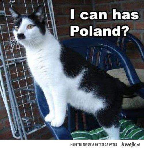 kitty hitler