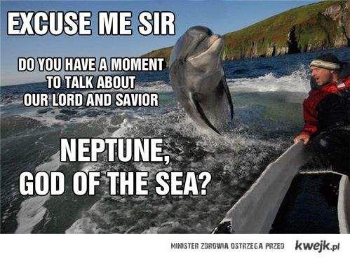 Delfiny jak jehowcy