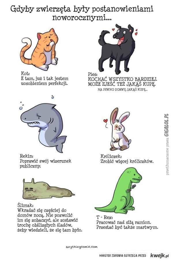 A wy? Jakim jesteście zwierzakiem?:)