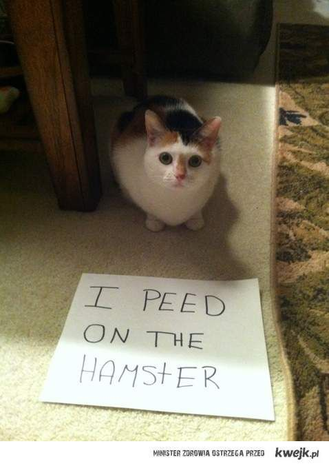 pissed on a hamster