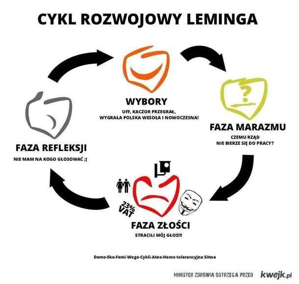Cykl rozwoju lemingów