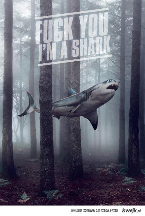 I'm Shark