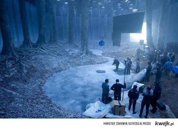 Scena w zakazanym lesie - Harry Potter
