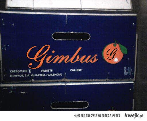 Gimbus pomarańcze