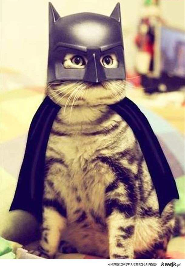 Dark Knight :P