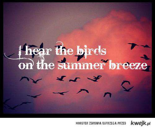 I hear the birds on the summer breeze