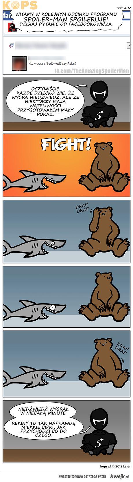 rekin vs niedźwiedź