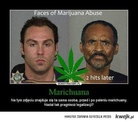 niemarychuzujmy legalizany!
