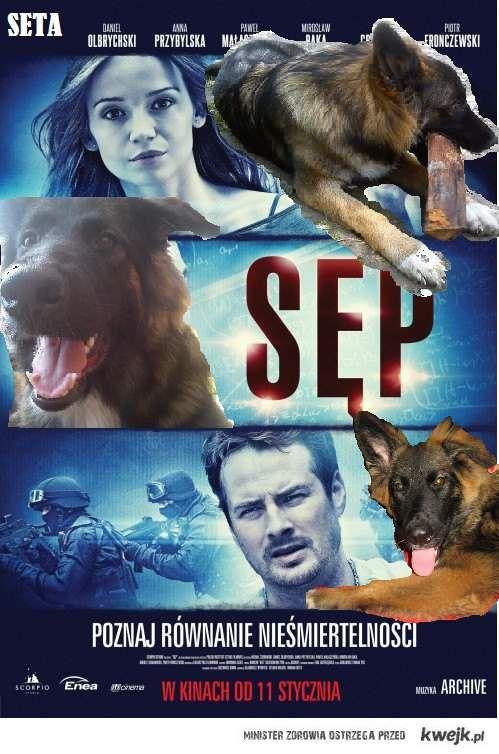 Film stworzony o moim psie