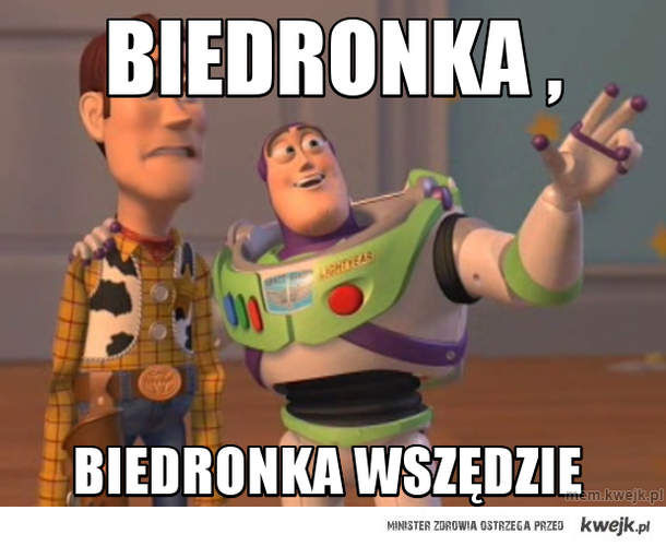biedronka ,