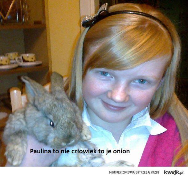 Paulina to nie człowiek to je onion