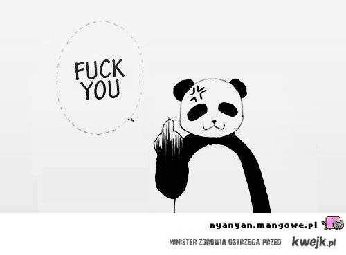 Sympatyczna panda.