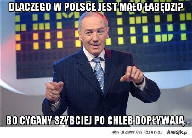 Dlaczego w Polsce jest mało łabędzi?