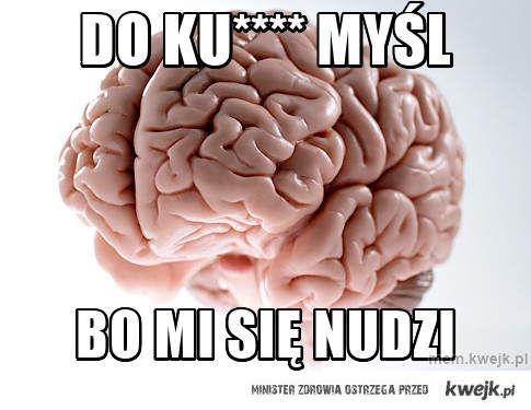 do ku**** myśl