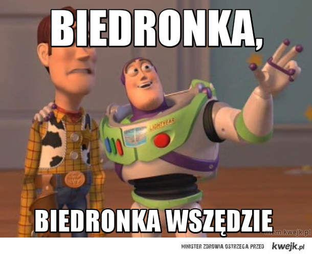 biedronka,