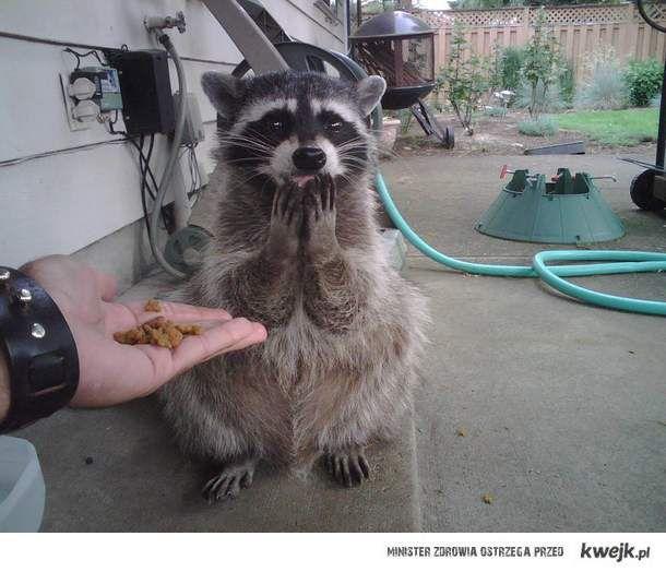 To dla mnie?