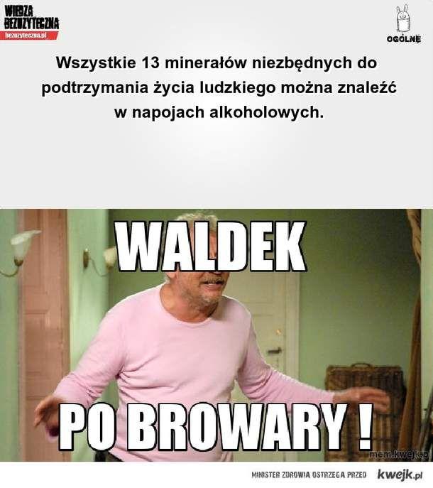 waldek !