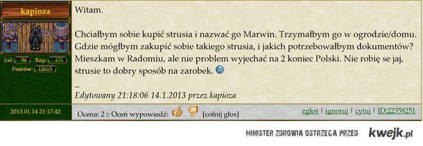 Margonem...