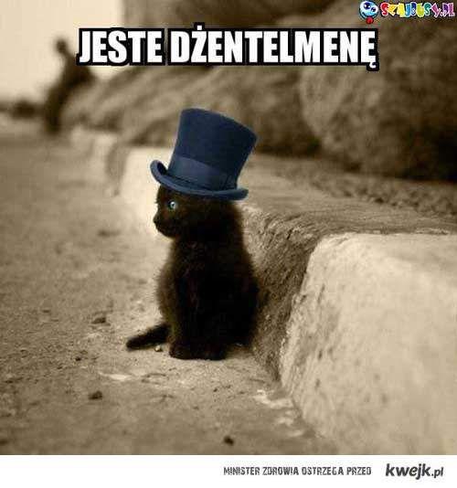 Jestem dżentelmenę