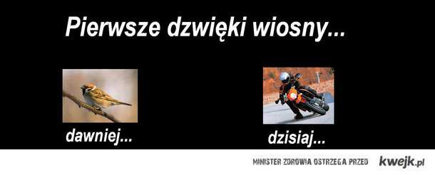 WIOSNA :))