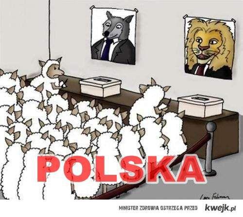 glosowanie w Polsce.