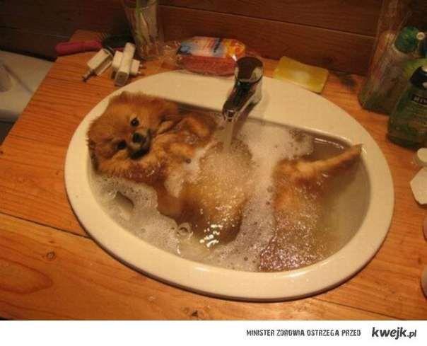 takie tam z umywalki