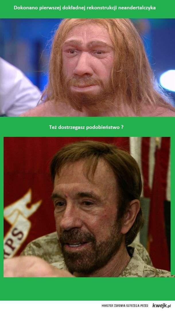 neandertalczyk?