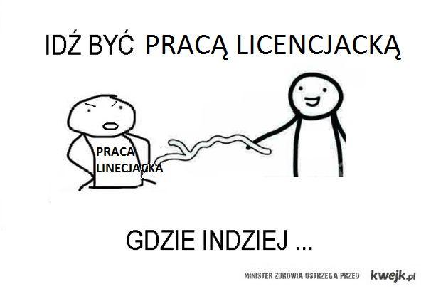 Praca Licencjacka Memy