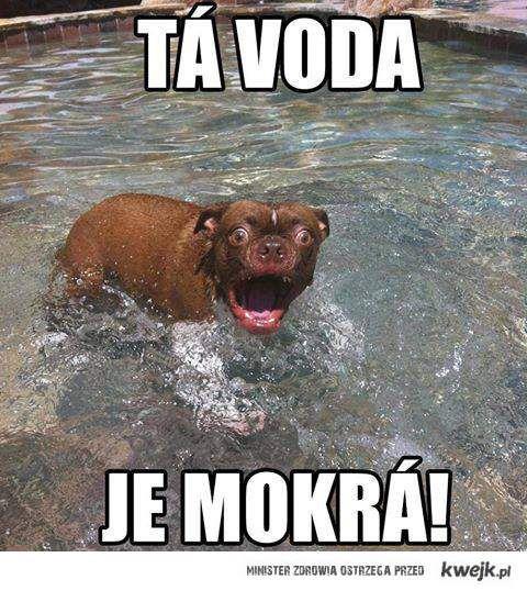 Ta woda jest..