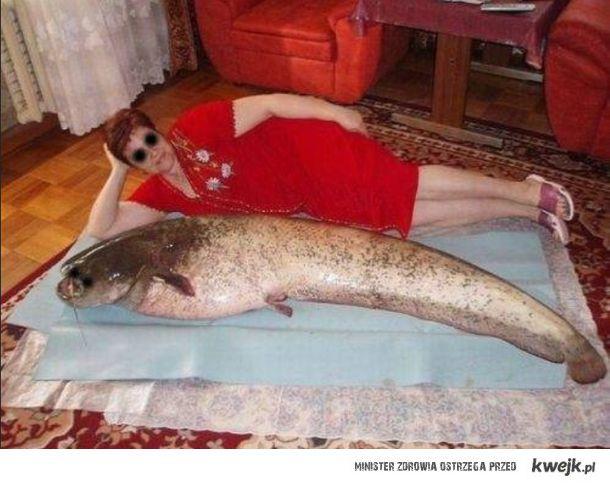SweetFocia z rybą