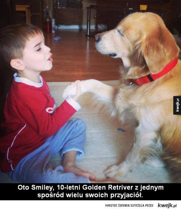Historia psa, który wabi się Smiley