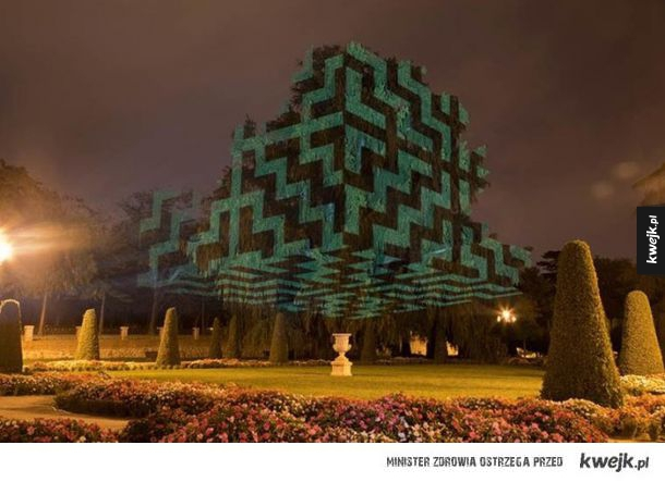 Javier Riera przemienia drzewa w surrealistyczne dzieła!