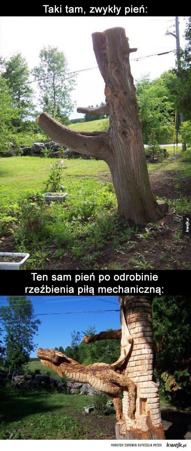 Idealny do ogrodu