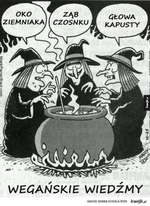 Gotują zupę