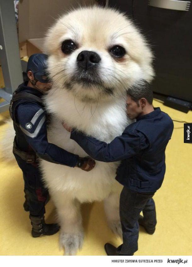 Przytul