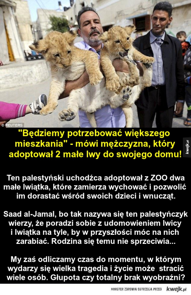 Mężczyzna, który adoptował dwa lwiątka...