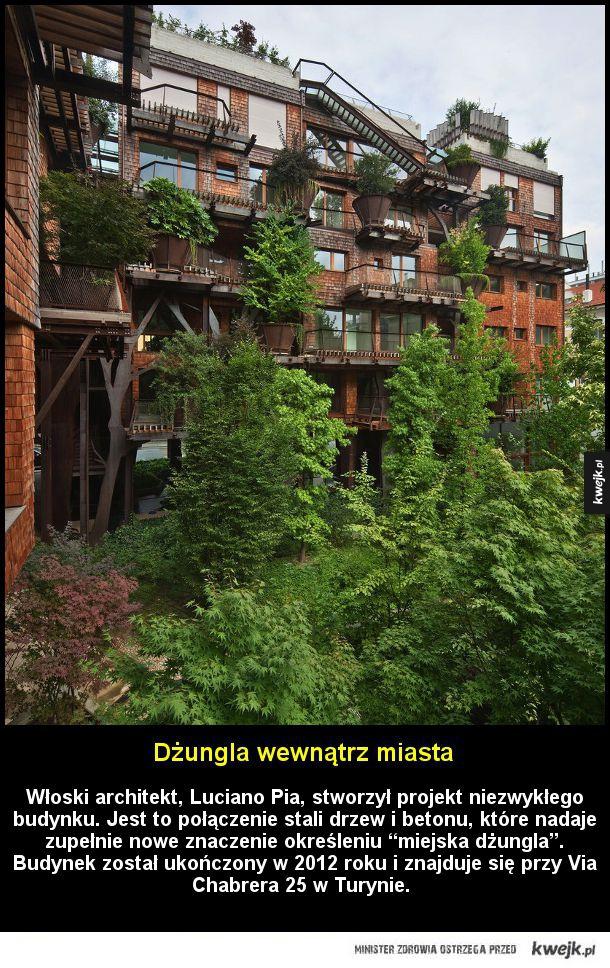 """Dżungla wewnątrz miasta - Dżungla wewnątrz miasta  Włoski architekt Luciano Pia stworzył projekt niezwykłego budynku. Jest to połączenie stali drzew i betonu, które nadaje zupełnie nowe znaczenie określeniu """"miejska dżungla"""". Budynek został ukończony w 2012 roku i znajduje się przy"""