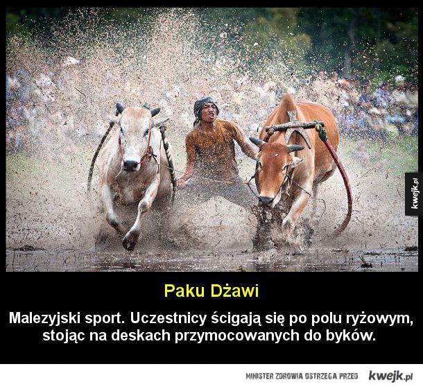 Najciekawsze sporty dla prawdziwych mężczyzn